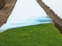 绿化用无纺布以及保水剂、粘合剂的作用详细说明